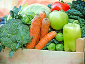 Crate full of fresh fruit and vegetable - organic food — Foto de Stock
