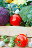 Fresh organic food - vegetables and fruits — Stock Photo