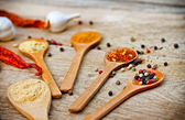 Variety of spices — Stock Photo