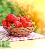 Färska ekologiska jordgubbar — Stockfoto
