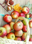 柳条编织的篮子里的有机苹果 — 图库照片