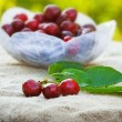 Fresh organic cherries — Foto de stock #41259839
