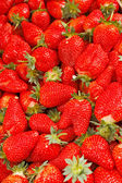 Fresh organic strawberries — Stock Photo