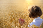 Woman holds wheat and pray for harvest — Stock Photo