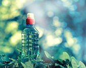 Bottled spring water - purified water — Stock Photo