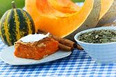 Pumpkin cake and pumpkin seeds — Stock Photo