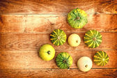 Pumpkin (guard, sqash) — Stock Photo