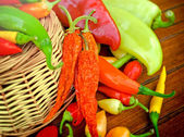 Dried and fresh peppers (multicolored peppers) — Stock Photo