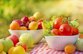 Organic fruits and vegetables — Stock Photo