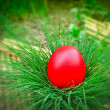 Stock Photo: Red Easter egg