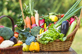 Organic vegetables in wicker basket — Stock Photo