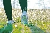 散歩が春のあなたの健康と気分を改善します。 — ストック写真
