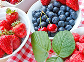 Fresh organic berry fruits - strong antioxidants — Stock Photo