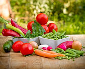 Bunch of fresh organic vegetables — Stock Photo