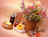 Spa treatment with natural ingredients — Stock Photo