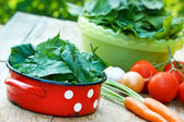 Healthy food - organic spinach — Stock Photo