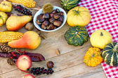Autumn fruit and vegetable - autumn harvest — Stockfoto