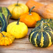 Pumpkin, squash, gourd - autumn harvest — Stock Photo #51484677