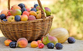 Wicker basket full of organic fruits — Stock Photo