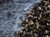 Sea side — Stock Photo