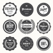 Set of retro vintage badges and labels — Stock Vector #22157891