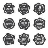 Conjunto de emblemas vintage retrô e rótulos — Vetor de Stock