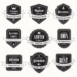 Set of retro vintage badges and labels - Stock Vector