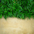 Grass and concrete background. — Stock Photo
