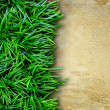 Stock Photo: Grass and concrete background.