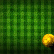 Soccer football on grass field — Stock Photo #28189313