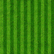 Grass field background — Foto de Stock