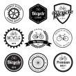 Set of bicycle retro vintage badges and labels. — Stock Vector #28191035