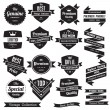 Set of retro vintage badges and labels — Stock Vector #28191207