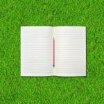 Blank open notebook — Stock Photo #31085415