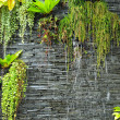 A waterfall on the stone wall with the green plants — Stock Photo