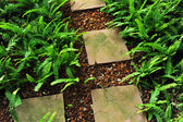 Stone path in the garden — Stock Photo
