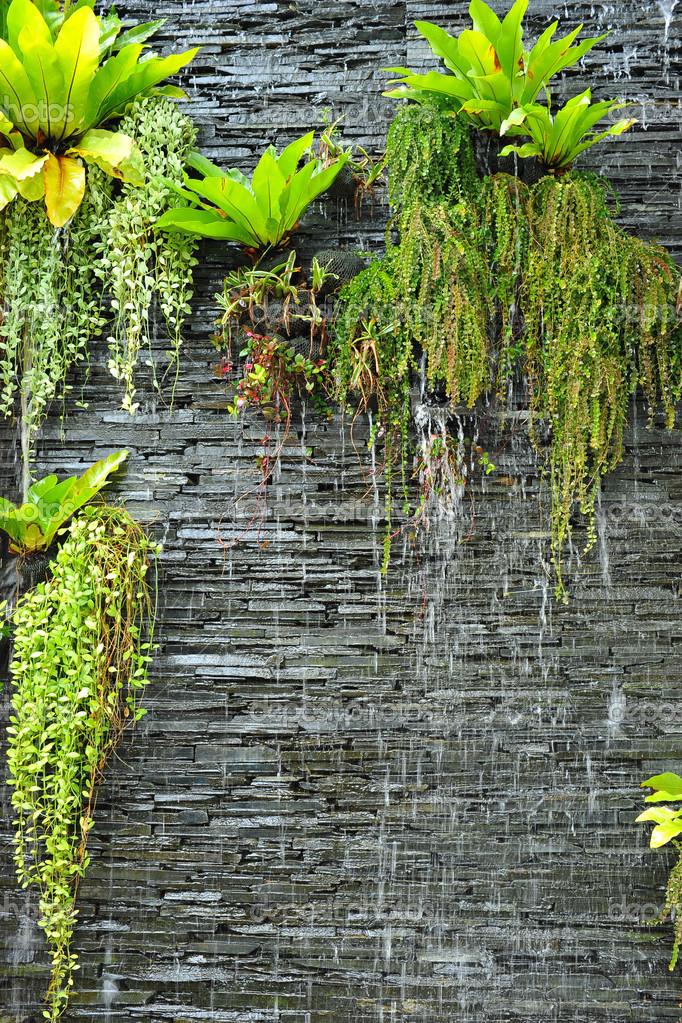 une chute d 39 eau sur le mur de pierre avec les plantes. Black Bedroom Furniture Sets. Home Design Ideas