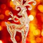 Christmas reindeer — Stock Photo