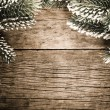 Stock Photo: Frame from branch of fir tree