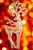 Christmas renar — Stockfoto