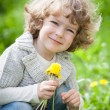 Child with bunch of dandelion — Stock Photo