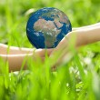 Earth in childrens hands — Stock Photo #21384613