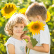 Happy children playing with sunflowers — ストック写真