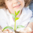 Family holding green young plant — Stock Photo #21385087