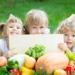 Children having picnic — Stock Photo #21385127