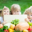 Kinder mit Picknick — Stockfoto #21385127