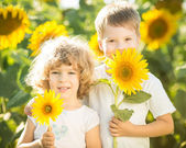 Happy children with sunflower — Stock Photo