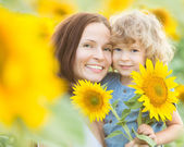 Happy family with beautiful sunflowers — Stock Photo
