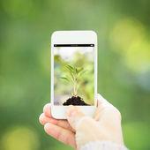 Vrouw hand bedrijf slimme telefoon — Stockfoto