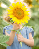 Child hiding by sunflower — Stock Photo